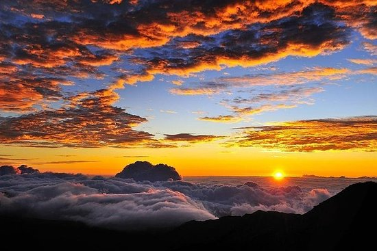 Tour all'alba sull'Haleakalā di Maui