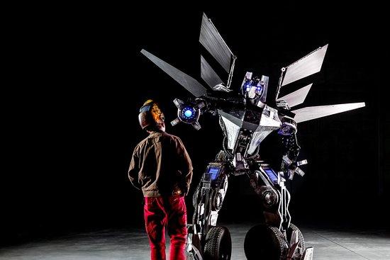 Fabryka Robotow
