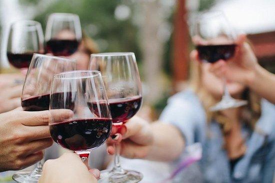 Visite de la région viticole de la Géorgie du Nord depuis Atlanta