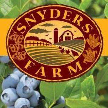 Snyder's Farm 586 South Middlebush Rd . Somerset Roadside Stand U-Pick - Strawberries - Blueberries - Pumpkins Movie nights Goat yoga Fall Festival  @snydersfarmnj www.snyders-farm.com