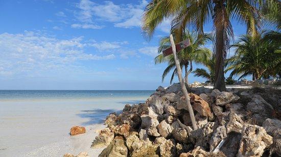 Plaja del Karmen, Meksiko: Holbox