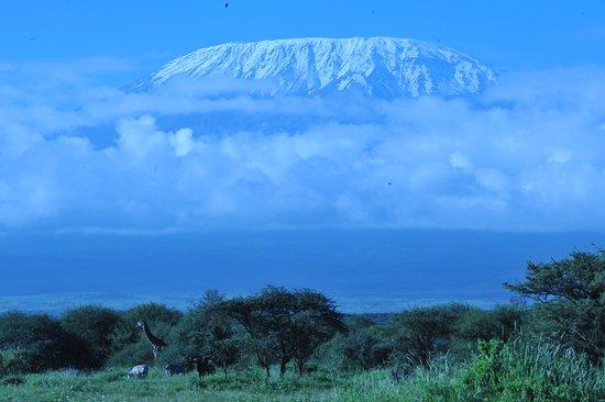 Kilimanjaro revealing its top