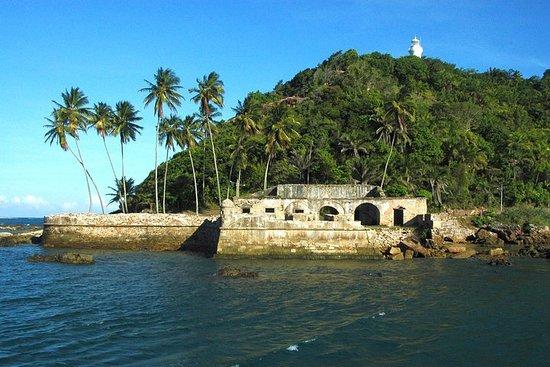 Excursão pelas ilhas do Morro de São...