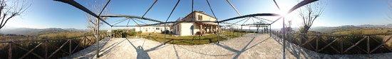 Foto de Villa Verucchio