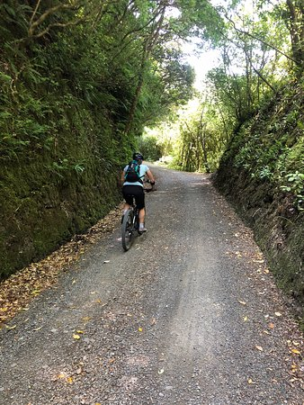 Remutaka Rail Trail sykkeltur fra Wellington: This is on the old rail way section of the trail.