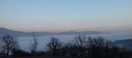 Province of Parma, Italië: Nebbia in valle padana