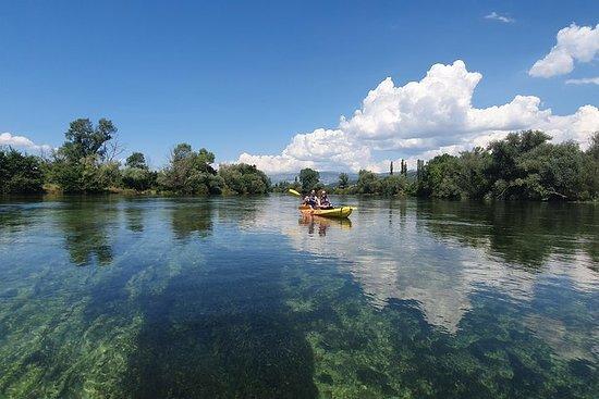 セチナ川のカヤックサファリ