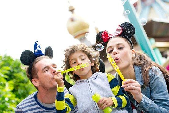 Billet 1Jour Disneyland Paris
