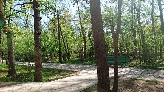 Таш-Дёбё, Киргизия: Место, созданное для прогулок