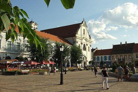 Privat Donau Bend Tour med Szentendre og Vac stopper og deilig lunsj