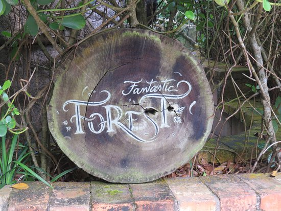 Park Unipraias Camboriu Admission Ticket with Round-Trip Cable Car Access: Fantastic Forest.