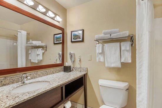 Traditional King/2 Queen Bathroom