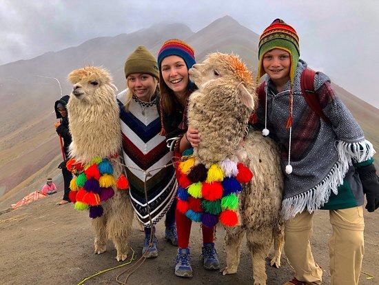 Cusco Transport & Tours