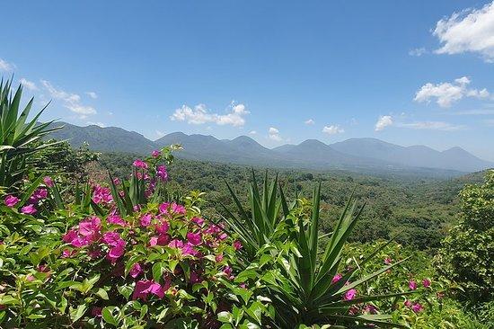 Full Day Ruta de Las Flores visit four Colonial Towns and Coffee Farm