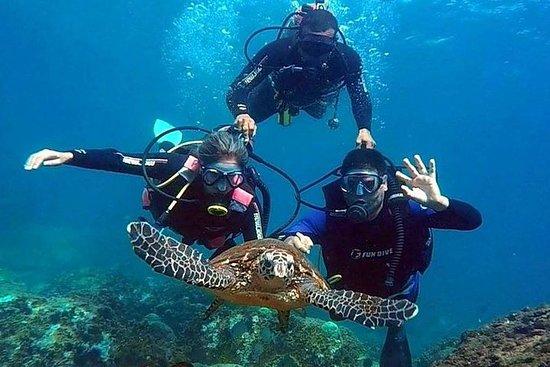 Diving for Beginners - Búzios RJ – fotografia
