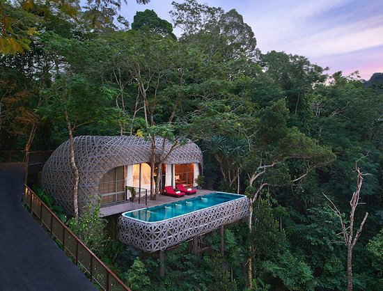 Birds Nest Villa