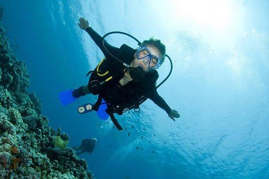 Try Scuba Diving (for Beginners) صورة فوتوغرافية