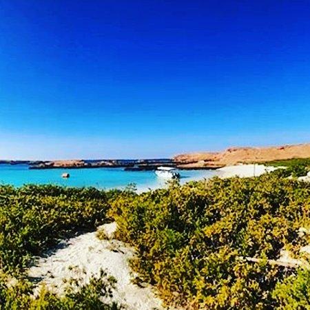 Damaniyat island