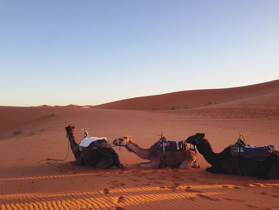 Hiking Nomads Morocco