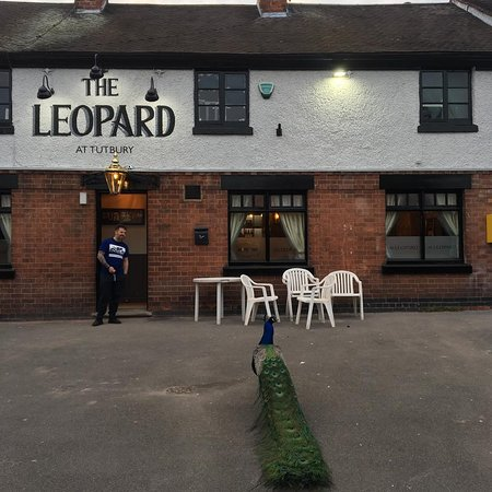 The Leopard at Tutbury