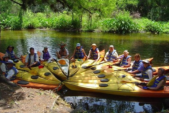 Little Wekiva River - 8 mile downstream paddle