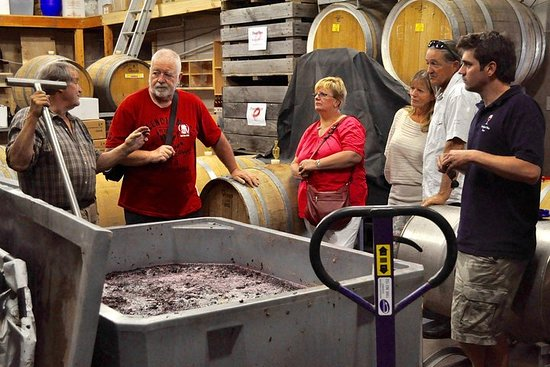 5 Hour Private Wine Tour