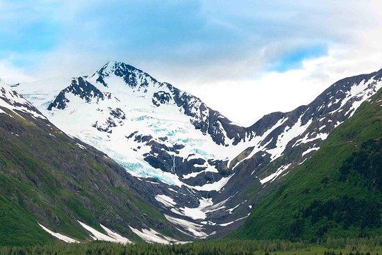Whittier Wildlife & Wilderness Photo Tour from Anchorage