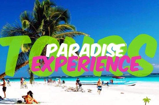 Paradise experience tours