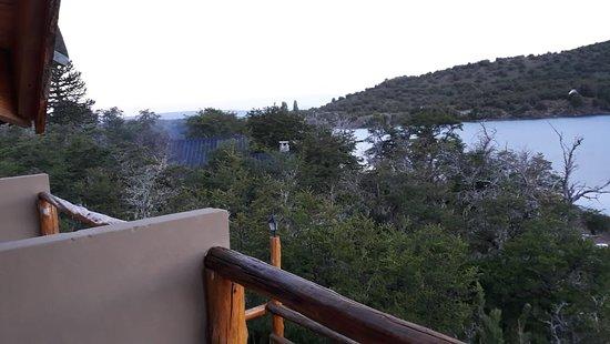 el bosque y las otras cabañas. vista desde el balcon de la habitacion