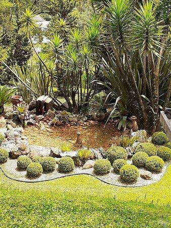 Jardim e fonte