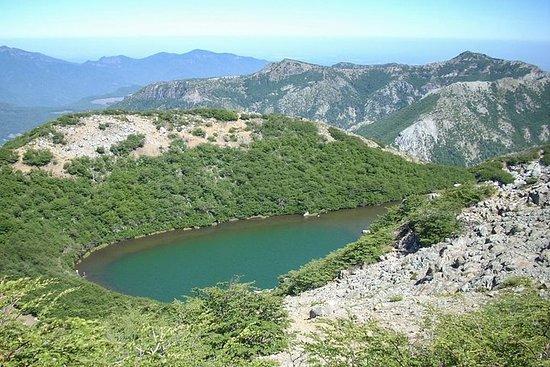 Huemul-lagune