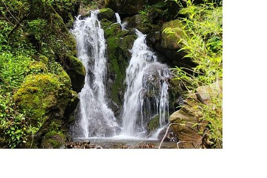 Montaña Cangshan: caminata por el...