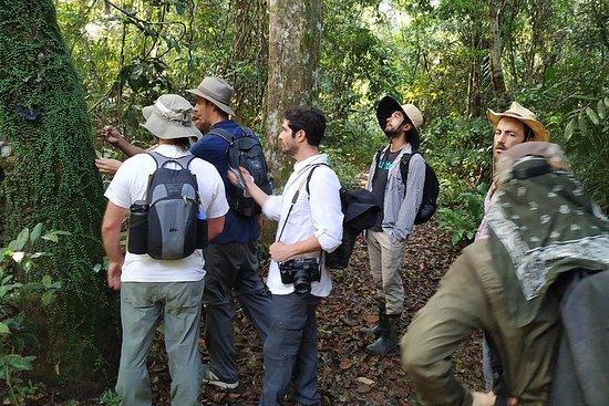 Regionale cruise in de Amazone