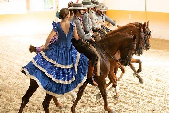 RITMO A CABALLO [flamenco - horse show]