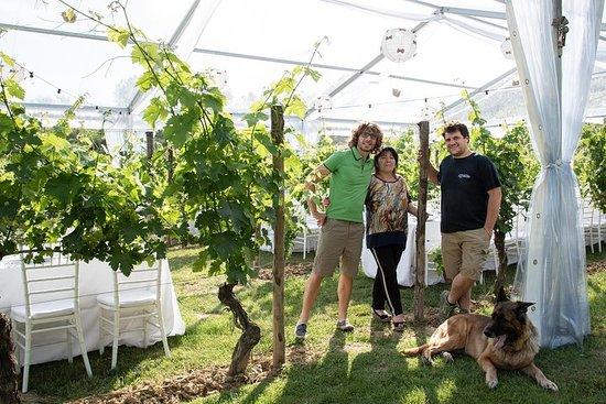 Toscana Wine Tours Podere Pellicciano...