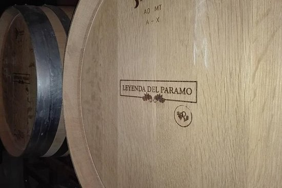 Wine Tourism And Gastronomy In Valdevimbre