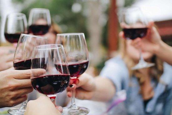 Wine Tasting & Chocolat -Private Custom Tour Niagara Falls...