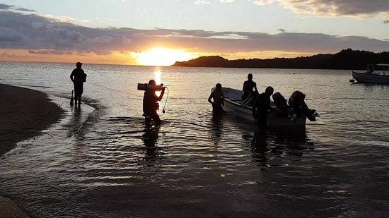Moheli, คอโมโรส: Night dive