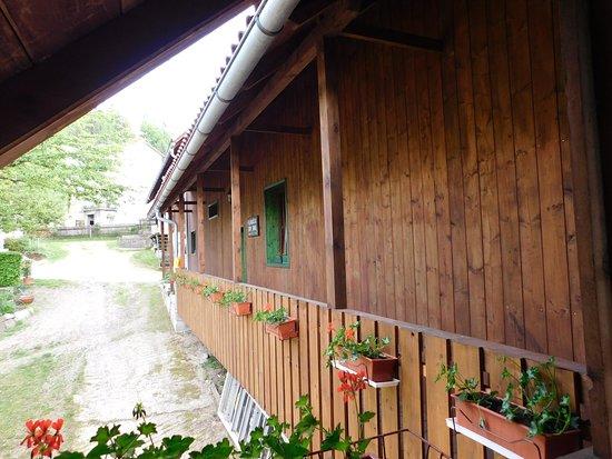 Delnice, Хорватия: getlstd_property_photo