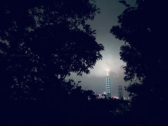 台北市大安區臥龍街195巷