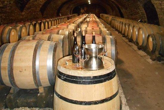 Excursion privée: Excursion d'une journée à la découverte des vins...