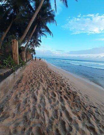 Mr. & Mrs Seidle's Honeymoon Tour in Sri Lanka Negombo/Sigiriya/Kandy/Ella/Mirissa/Hikkaduwa