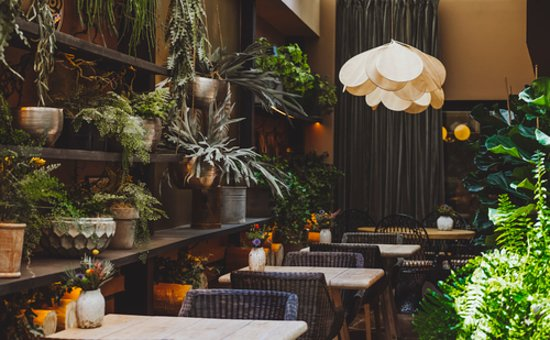Restaurante La Palmera Del Indiano Picture Of Barcelo Oviedo Cervantes Tripadvisor