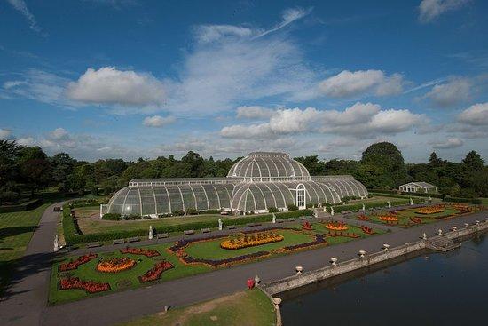 Kew Gardens Entrébiljett