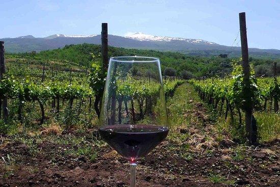 Etna y vino