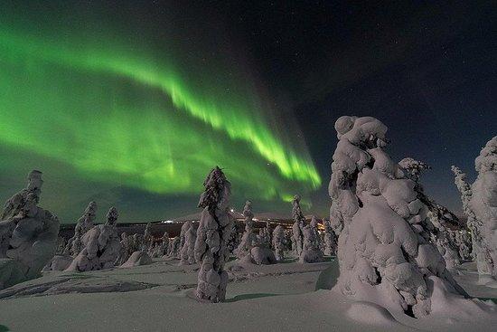 Caça da aurora boreal de microônibus