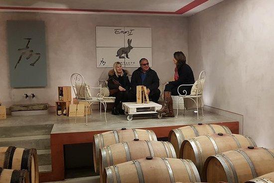 Toscana vinoplevelse