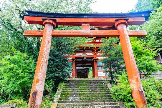 Private Tour - Climb a World Heritage, Mt. Yoshino, Feel Like a Monk!