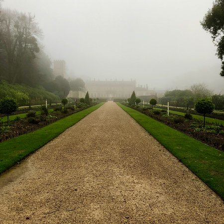 Dyrham Park, The Avenue