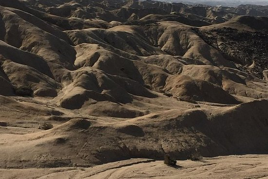 Désert du Namib (Trésors du désert du...